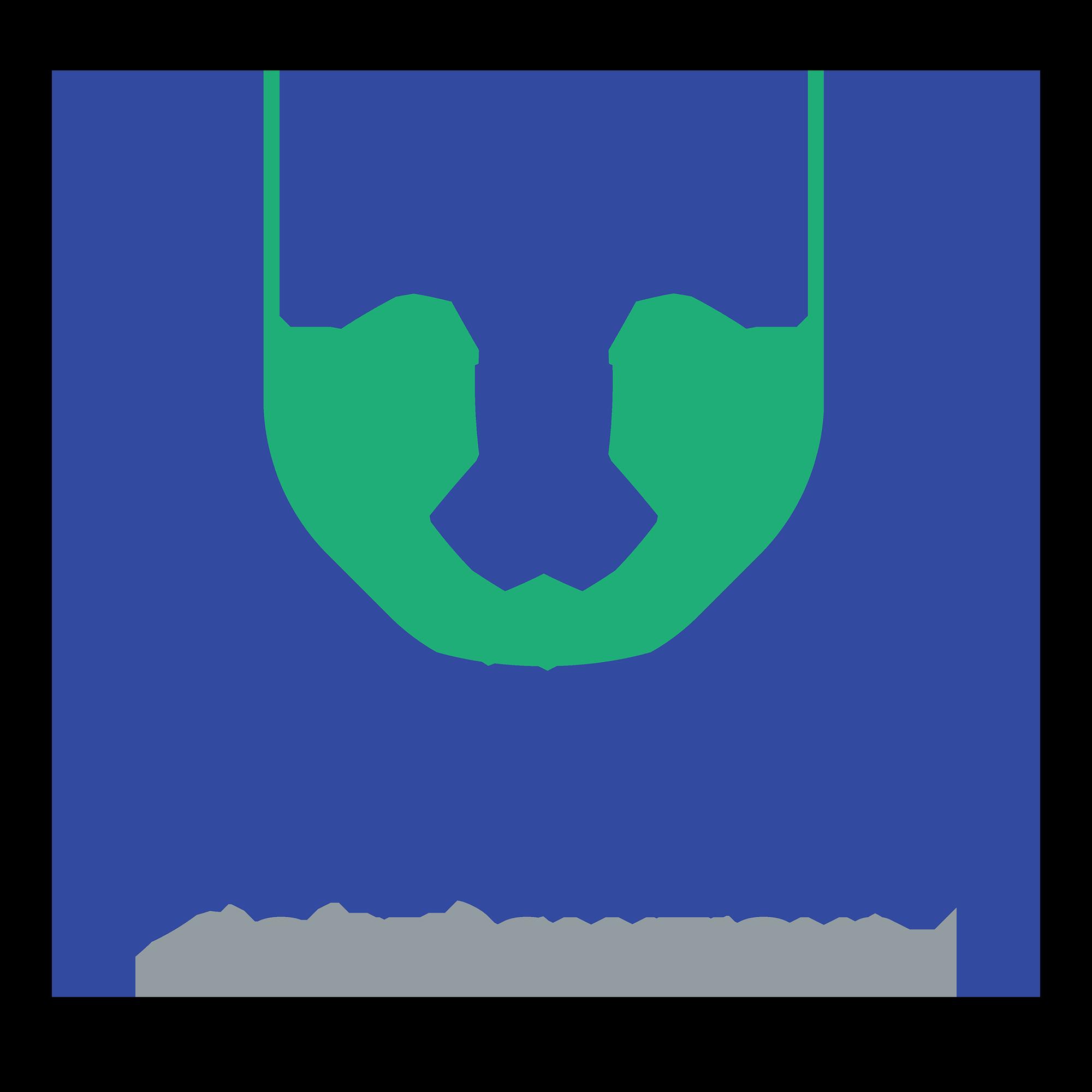 Citizen Home Solutions Logo